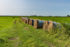 hay bales for pick-up