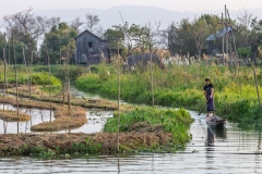 Boating in the floating gardens of Inle Lake