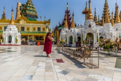 Praying Monk@Shwedagon Pagoda