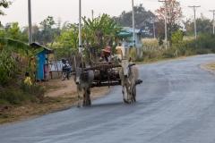man on rickshaw
