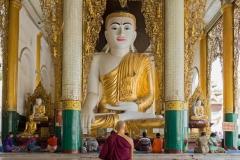 Meditation Monk